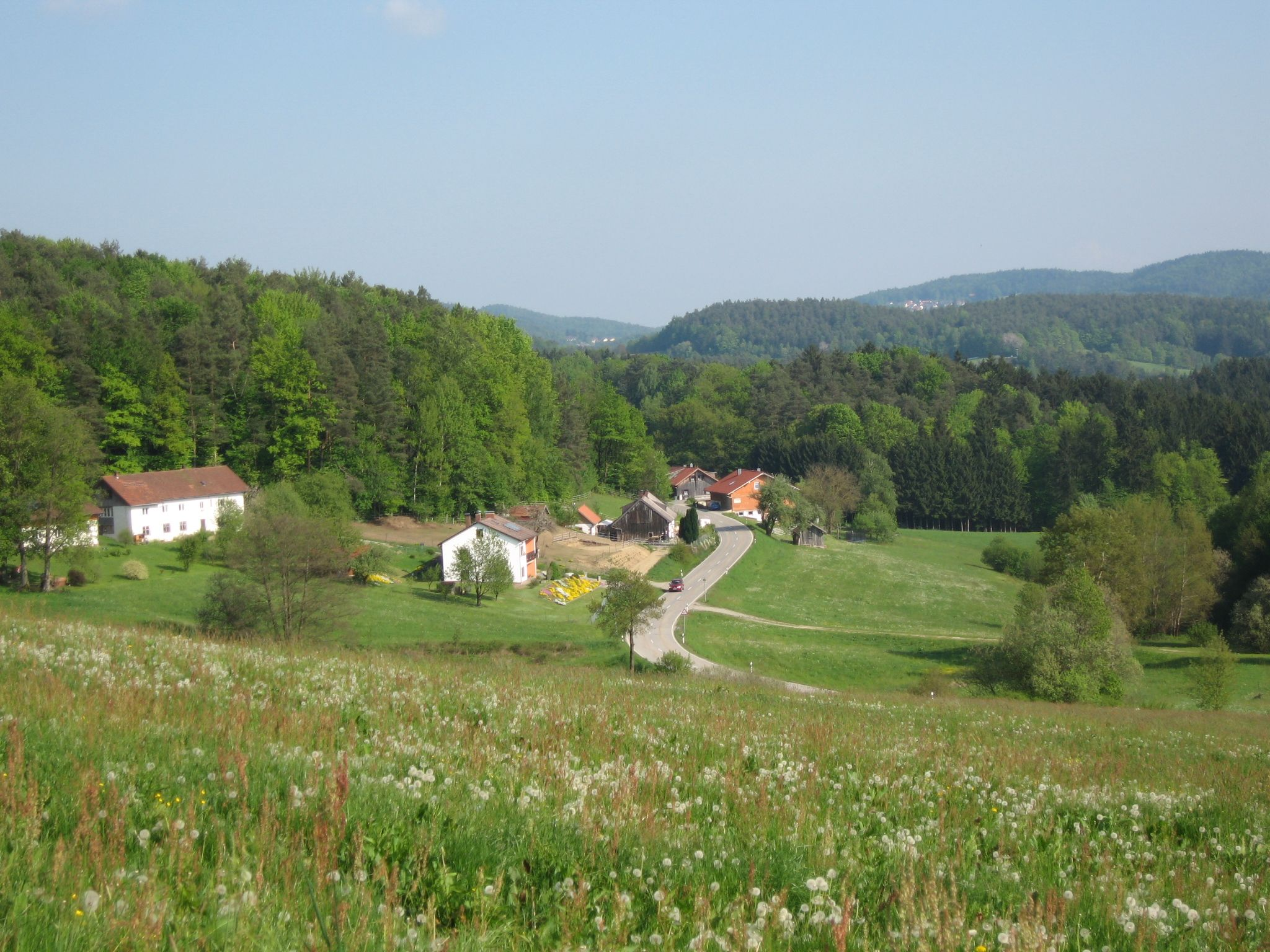 Burgsdorf